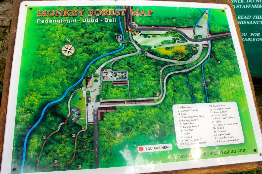 Map of Monkey Forest